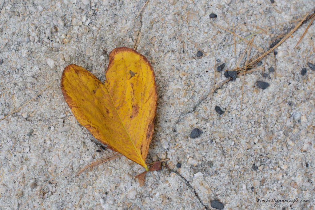 heart via kimberlyanncoyle.com